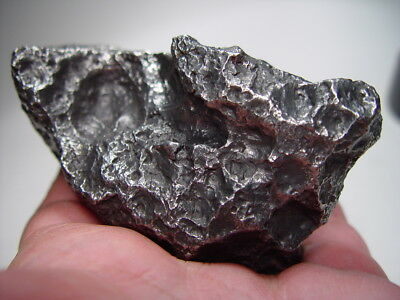 Museum Quality! Lots Of Thumbprints! Best New Campo Del Cielo Meteorite 1216 Gms