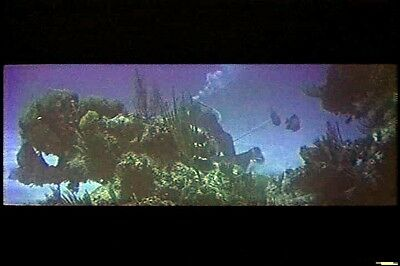 Beneath the 12-Mile Reef (1953) Underwater Cinemascope