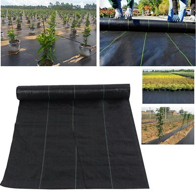 CHEAP Weed Control Fabric Ground Cover Membrane Landscape Mulch Garden 2M Wide B