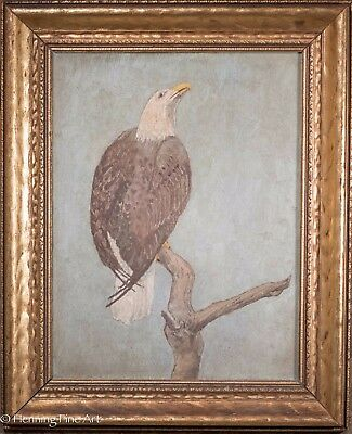Antique American Folk Art Bald Eagle Oil Painting, Unsigned & Beautiful Frame