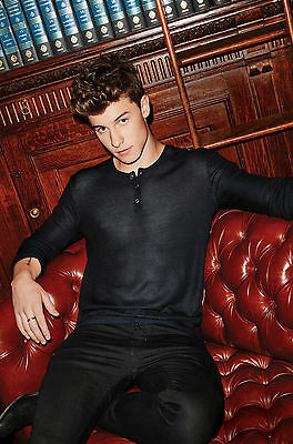 Shawn Mendes Glossy Poster Print A4 260gsm