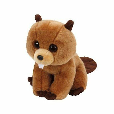 TY BEANIES - RICHIE THE BEEVER- approx 15 cm- GENUINE TY BEANIE BABIES