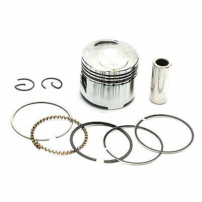 50cc Complete Cylinder And Piston Kit Assembly Meerkat