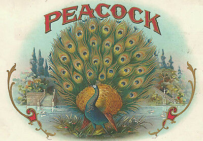 Beautiful Peacock Antique Cigar Box Label T Shirt Small-Xxxlarge (F)