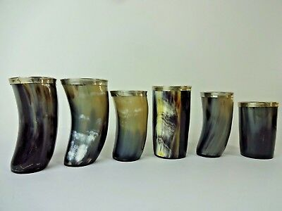 TWO'S COMPANY - Silver Rim Viking Horn Cup Glass Beer Ale Beautiful Set Of 6 Pc