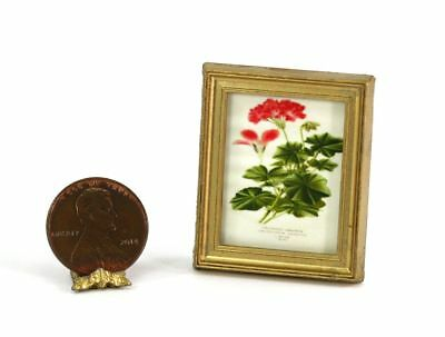 Dollhouse Miniature 1:12 Gold Framed Print of a Vintage Style Red Botanical I...