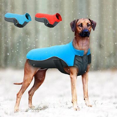 Winter Large Dog Coat Cothes for Big Dogs Fast Free Shipping Waterproof Jacket