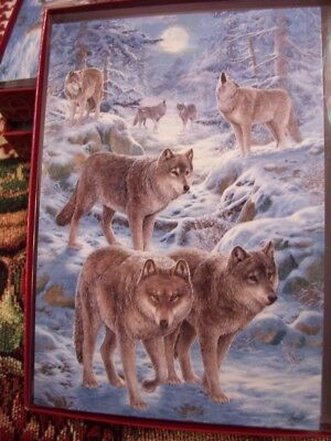 Leanin Tree  Christmas Card Set Wolf Family In The Midnight Snow 10 Pk New !
