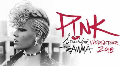 P!NK (PINK) beautiful trauma tour Iron On Transfer  t-shirt embellish 16x9.5cms