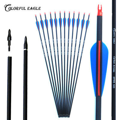 """28""""/30""""/31"""" archery hunting Mix carbon arrow for Compound/recurve bow with point"""