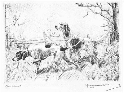 Pointer & Setter Dogs 1925 Marguerite Kirmse  8 LARGE New Blank Note Cards
