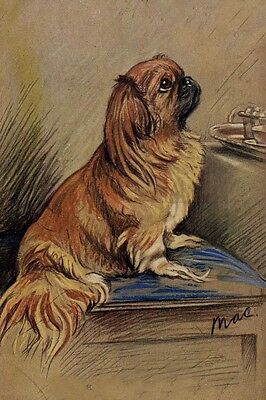 Pekingese Dog Waits forTreat by Lucy Dawson 1937- LARGE New Blank Note Cards