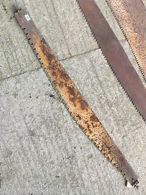 Reclaimed Old Vintage Double Man Steel Wood Saw Collectable 5ft 10ins Long