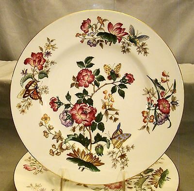 "Wedgwood Bone China Charnwood Dinner Plates 10 3/4"" dia"