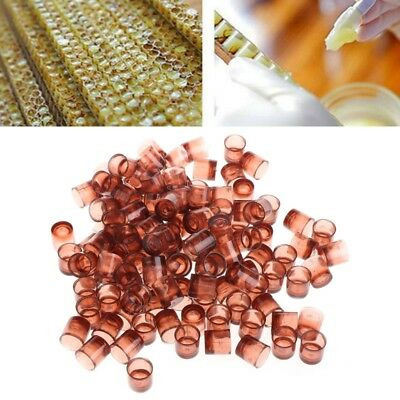 120 PCS Beekeeping Queen cell Brown Feeding Bee tools Applicable to beekeepers