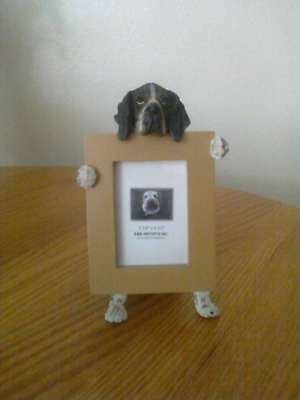 German Shorthaired Pointer GSD 2 1/2 x 3 1/2 Picture Frame Clearance