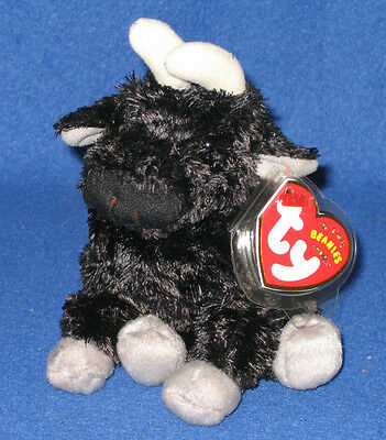 TY OLE the BULL BEANIE BABY  -  SPAIN EXCLUSIVE - MINT with MINT TAG