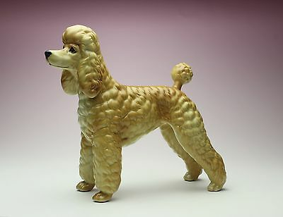 Apricot Poodle with Show Clip Porcelain Figurine Red Groomed Dog NEW Japan