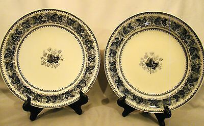 "Pair of Antique Staffordshire Copeland Black Transfer Ivy Pattern 10"" Plates"