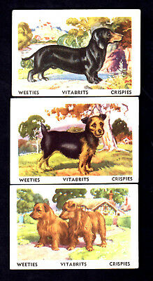 Nabisco Vita-Brits Crispies - Tailwaggers (1958) - 3 Collector Cards