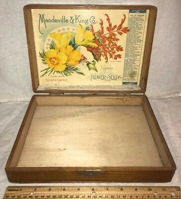 Antique Mandeville & King Flower Seed Wood Garden Box Rochester Ny Country Store