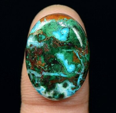 18.85 Cts. 100% Natural Chrysocolla Oval Cab Loose Gemstones Titanium_Gems