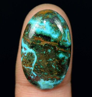21.90 Cts. 100% Natural Chrysocolla Oval Cab Loose Gemstones Titanium_Gems