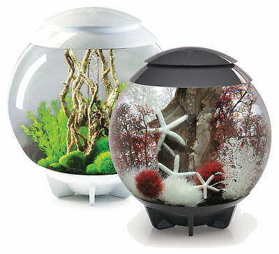 Oase Biorb 60L Halo Multi Colour Remote Led Mcr Bowl Fish Tank Coldwater Kit