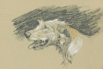 Irish Wolfhound Dog Portrait by Cecil Aldin 1934  ~ LARGE New Blank Note Cards
