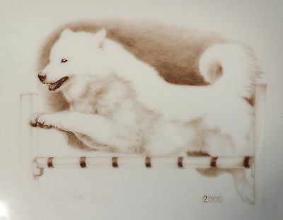 2000 LAURELWOOD Plate Samoyed Agility Rally Jumping ..Gorgeous w gold trim *