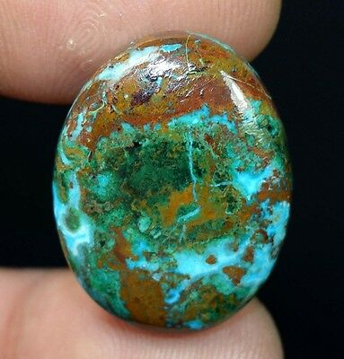 24.55 Cts. 100% Natural Chrysocolla Oval Cab Loose Gemstones Titanium_Gems