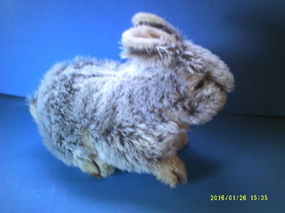 Plush Frosted Realistic Shaggy Bunny Rabbit