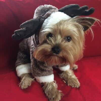 Small Pet Reindeer Christmas Costume