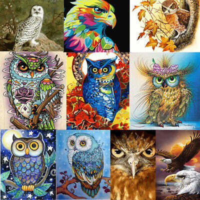 Acrylic Paint By Number Kit Scenery Oil Painting DIY Home Wall Decor Owl Eagle