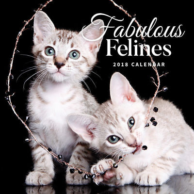 Fabulous Felines 2018 Square Wall Calendar by Paper Pocket Free Postage
