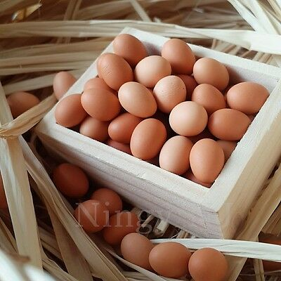 20x Eggs Loose Dollhouse Miniatures Food Supply Groceries Shop Wholesale Lot