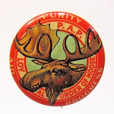 1890's MOOSE PURITY AID PROGRESS Fraternal pinback button  +