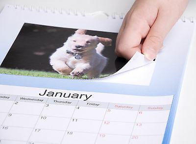 "Make Your Own 2020 Personalised A4 Calendar With Your 6X4"" Photo Prints"