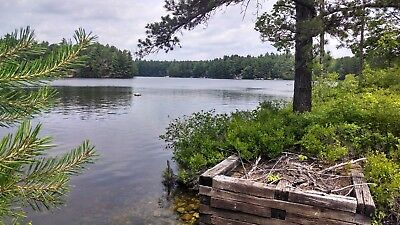 Waterfront land/lot on Pine River Pond in E. Wakefield, NH