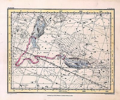 1822 ASTROLOGY ATLAS Print poster old PICES the fishes constellation ZODIAC 30