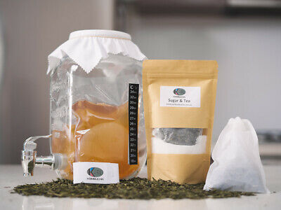 4L Kombucha Scoby Complete Starter Kit with 4 Litre glass Jar/Dispenser BPA FREE