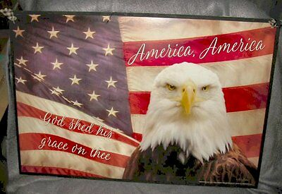 "Handmade Primitive Picture  Wall Art by Lori Deiter "" American Eagle Flag"""