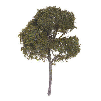 3.54 inches landscape landscaped Model of Sycamore Tree / Model of Sycamore C3H2