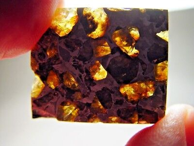 Museum Quality! Amazing Crystals! Beautiful Brahin Pallasite Meteorite 11.8 Gms