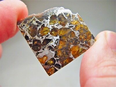 Museum Quality! Amazing Crystals! Beautiful Brahin Pallasite Meteorite 11.5 Gms