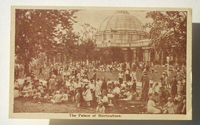 1920s Horticulture Canadian National Exhibition Toronto ON Canada Postcard