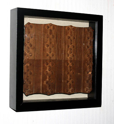 """Frame antique FRENCH Woodblock Architectural ART Wallpaper Press, """"les Boutons"""""""