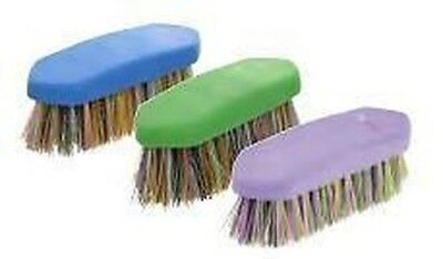 HySHINE Multi Colour Horse Pony Grooming Dandy Brush 3833P