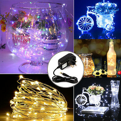Micro Flexible 10-30M LED Fairy Rice Metal Wire String 12V Mains Powered Lights