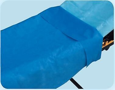 Everyday Stretcher Sheet Flat 40 X 90 Inch Blue Tissue/Poly Disposable -50/Case